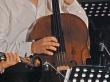 cello_8014