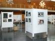 jahreskunstausstellung-2014_bild-1_0